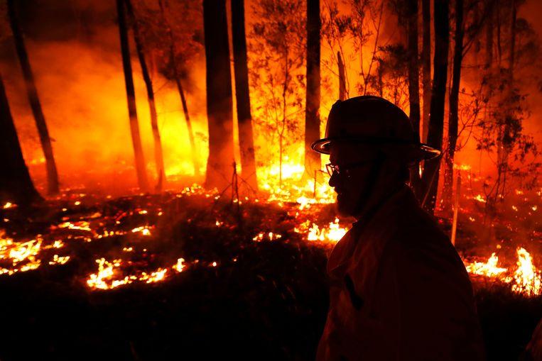 Het zuidoosten van Australië wacht de ergste dagen sinds het begin van de bosbranden, met zeer hoge temperaturen, hevige wind en een lage vochtigheid. Beeld Getty Images