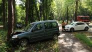 Auto botst tegen boom in Tassijnslaan