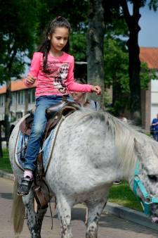 Paarden weg van ponymarkt Puttershoek