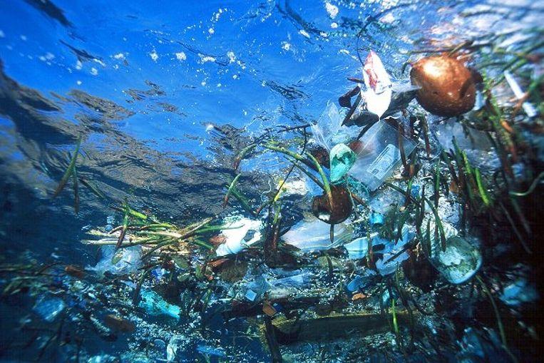De plastic soep in de zeeën en oceanen. Beeld AP