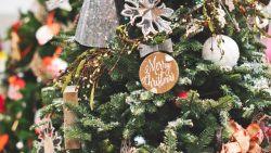 Een kunstboom of toch een echte? En hoe ontwar je die lichtjes? 10 punten waarop je moet letten bij de aanschaf van een kerstboom