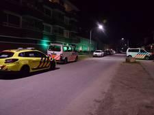 Zevenbergse van balkon gegooid: vrouw kon pas na maanden worden gehoord vanwege zware verwondingen