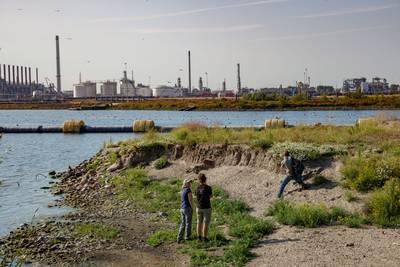 Haven Moerdijk is decor voor natuurfilm De Nieuwe Wildernis 2