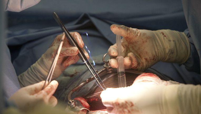 Artsen transplanteren een nier. Beeld Thinkstock