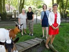 Jubilerend Bikse Kamers wil verjongingsslag maken in Hilvarenbeek