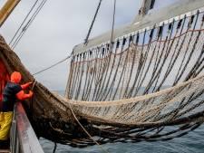 'Europese Unie komt met totaalverbod voor pulsvisserij'