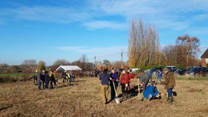 Natuurpunt Zwalmvallei plant 8.000 bomen