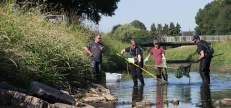 Vissen uit drooggevallen Achterhoekse beek op transport: 'Net op tijd, of net te laat'