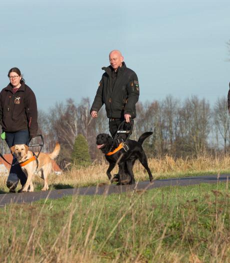 Pieter-Jan en Elly hebben een blindengeleide-hondenschool in Kilder: 'Het is hier super'