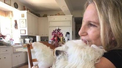 """Barbra Streisand laat haar overleden hond klonen: """"Ik was zo verdrietig na het overlijden van Samantha"""""""