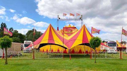 Circus Barones zet tent op aan De Ster