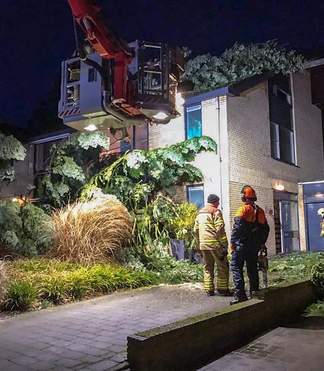 Boom valt op woning in Velp