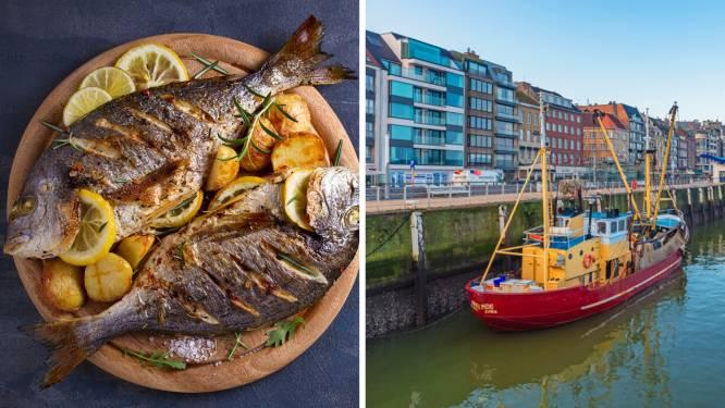 """Heeft een harde brexit ook gevolgen voor het stukje vis op je bord? """"Kans is groot dat je binnenkort meer betaalt voor bepaalde soorten"""""""