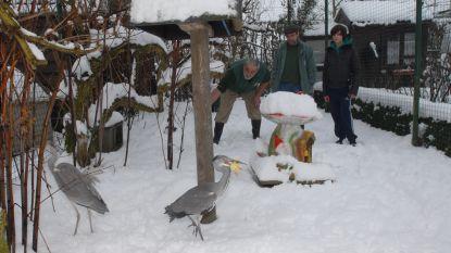 Eerste kersthappening in vogelopvangcentrum