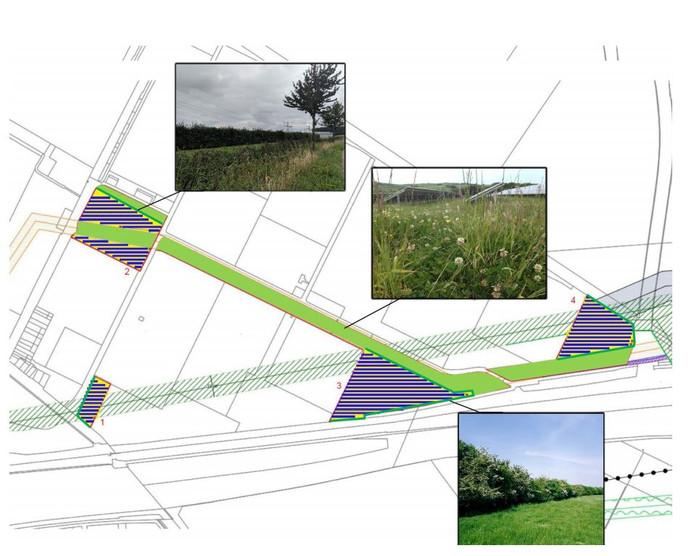 Landschappelijke impassing van de vier zonnevelden in de Bathpolder bij Rilland. Op het grootste perceel (middenonder) wil Engie een biovergister bouwen.