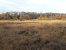 Nieuwe loopbrug voor natuurgebied bij Uddel in de maak