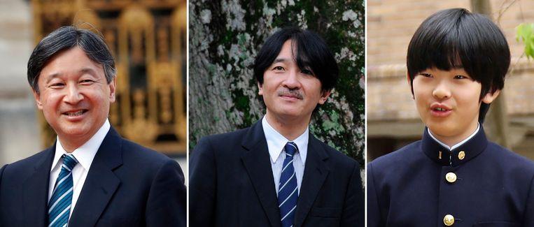 De nieuwe keizer Naruhito (links), zijn jongere broer Akishino (midden) en diens zoon Hisahito(rechts).