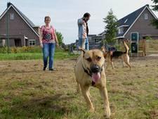 Speelweide voor honden in Lopik blijkt gewoon een poepveld te worden