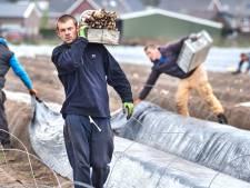 Arbeidsmigranten mogen in Boekel niet in woonunits wonen