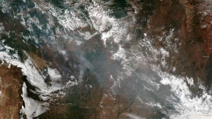 Bosbranden Amazonewoud woeden in recordtempo, zelfs zichtbaar vanuit ruimte