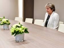 Eenzame Theresa May met bloempotten mikpunt van spot