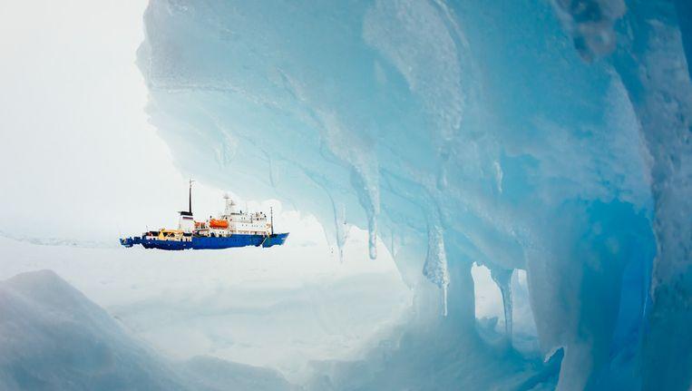 Het bij Antarctica in het poolijs vastgelopen Russische schip Akademik Sjokalski. Beeld afp