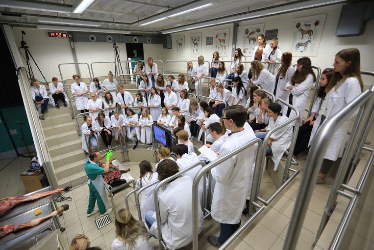 Faculteit dierengeneeskunde Merelbeke