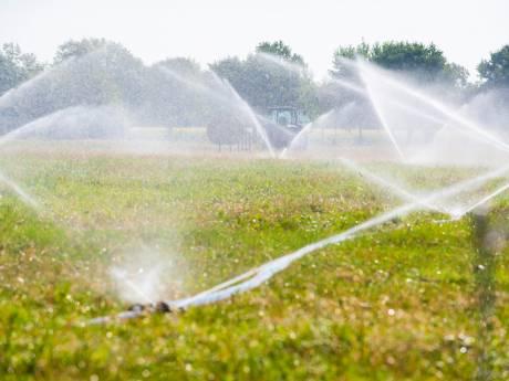 Waterschap Rivierenland: hier geen reden tot paniek om droogte