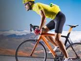 Ploegleiders uit Dronten en Ermelo winnen zestiende rit Stentor Tour Wielerspel