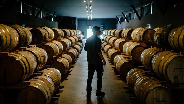 Een medewerker tussen de vaten met whisky. Beeld EPA
