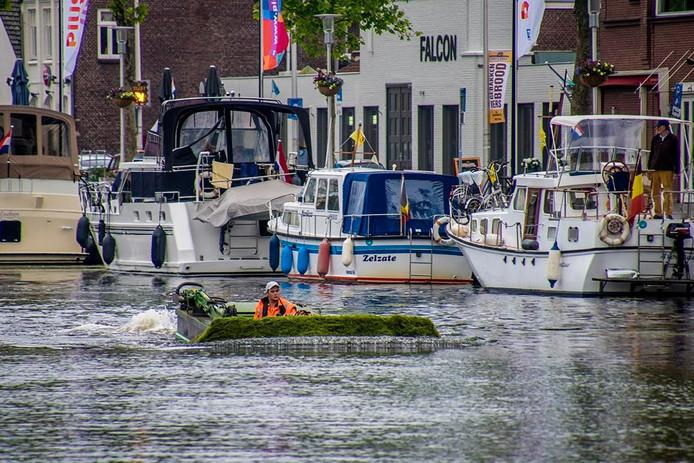 Het maaien van de waterpest. Foto Jan van Eijndhoven