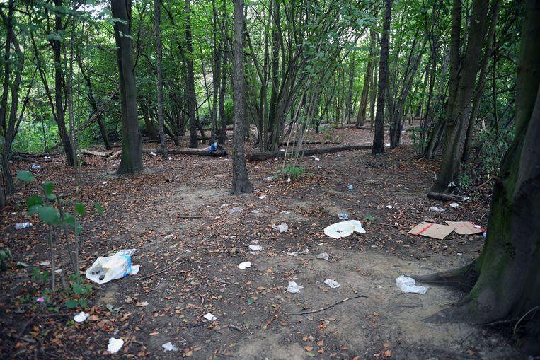 De sporen in het bos van Transmigranten langs de E40 in Heverlee.