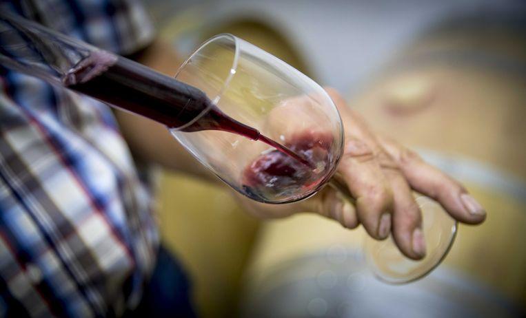 De wijnbouw is notoir vervuilend, maar nieuwe wijnlanden werken milieuvriendelijker dan de traditionele. Beeld ANP