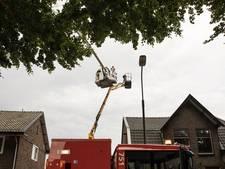 Hoogwerker blijft weg uit Den Bosch