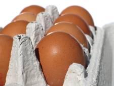 Stelletje (28 en 36) aangehouden voor diefstallen uit eiermachines