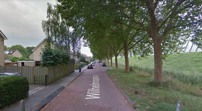 De Wilhelminastraat in Vianen.