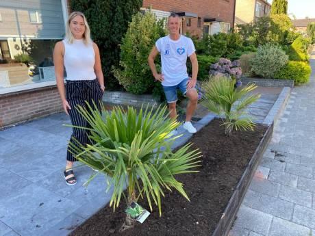 Dit keer wordt Laura uit Apeldoorn aangenaam verrast: 'Misschien zijn deze palmbomen nog wel mooier dan de twee die gestolen zijn'