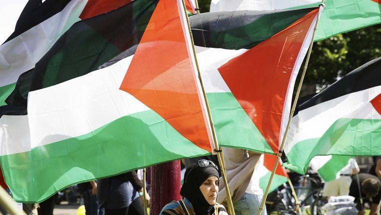 Een demonstrant met een Palestijnse vlag tijdens een demonstratie op het Museumplein in Amsterdam op 3 augustus. Beeld anp