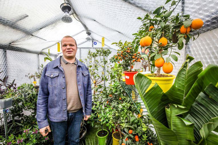 Brecht Beheydt heeft verschillende serres in zijn plantenopvang.