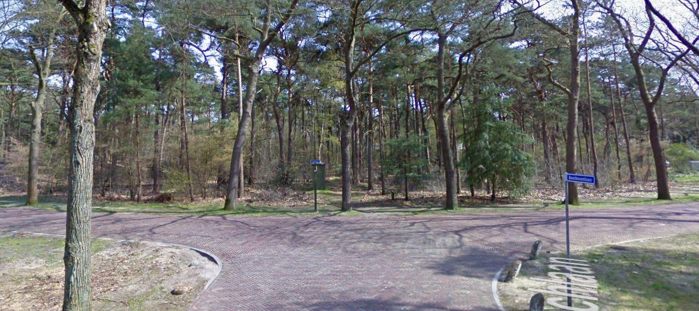 Het Bachbos in Bilthoven Noord