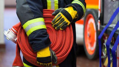 Brandweer redt vier personen, onder wie twee kinderen, uit woningbrand in Bornem
