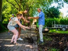 Lange rij voor gratis perenboompjes (en nu zijn ze op)