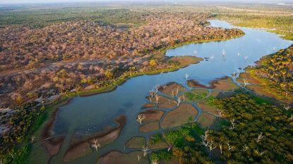 Bouw van controversiële dam in natuurreservaat Tanzania gestart