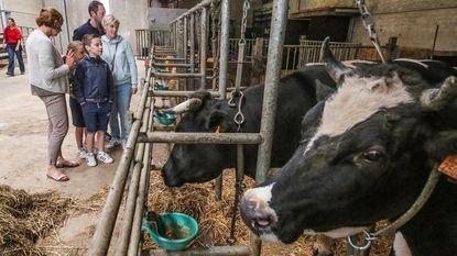 Koetjes bezoeken op 'Schoon Boeren'