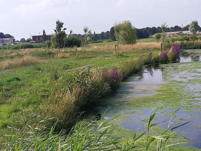 Natuur en water gaan volop samen in Geerpark in Vlijmen.