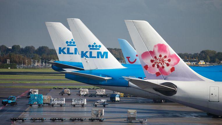 De staarten van KLM-vliegtuigen en een China Airlines vliegtuig. Beeld anp