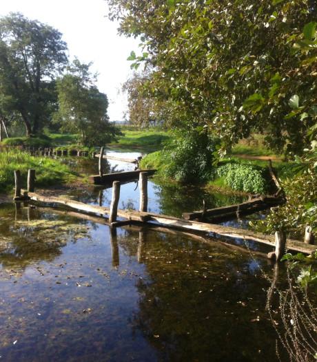 'Speeltuin met steeds nieuwe avonturen' moet in Park Montfoort komen