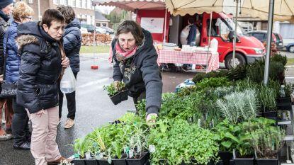 Pittem zet producten van eigen bodem in de kijker met boerenmarkt