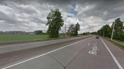Ringlaan Pittem krijgt nieuw geluidsarm asfalt