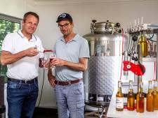 Bob's Kombucha wil vanuit Gorssel met zwammendrank Nederland veroveren